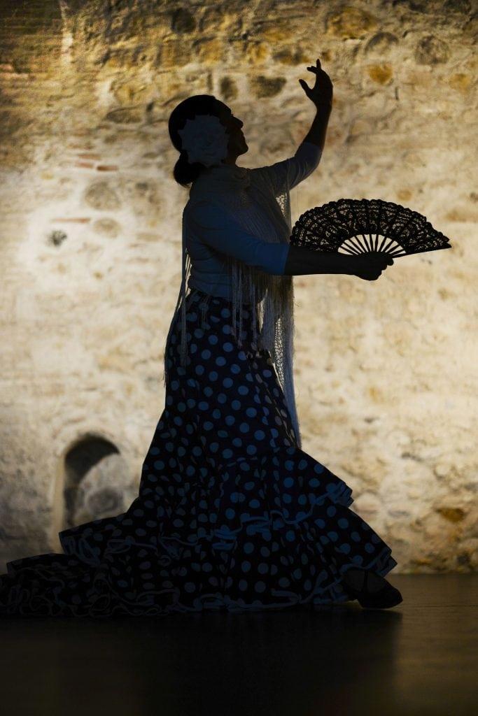 Flamenco dance show