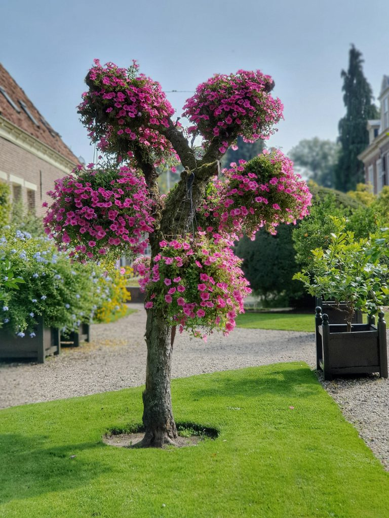 Flowers and trees in the garden of Castle Warmelo
