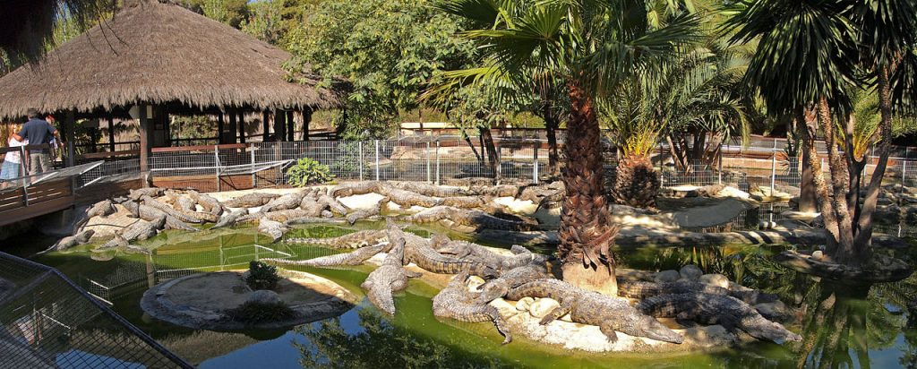 Torremolinos Crocodile Park